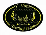 Y-Town Diving Team Logo